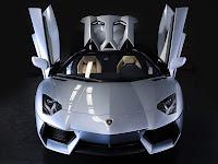 2014 Lamborghini Aventador LP700-4 Roadster picture 5