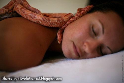 http://3.bp.blogspot.com/-rcJciPwHa8c/TjbvvSWx-WI/AAAAAAAAEoc/vU5AUp9u6Co/s1600/ular%2B3.jpg