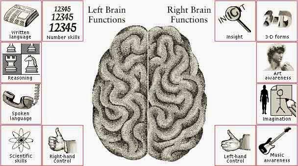 Fakta Uniknya Otak Kanan
