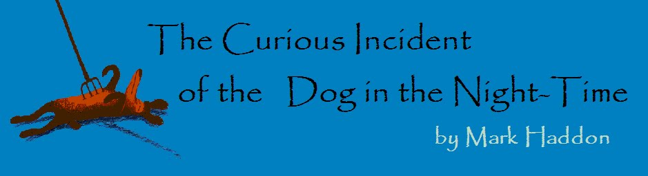 Novel study 1E - Adolf Øien 2013                The Curious Incident with the Dog in the Night-time