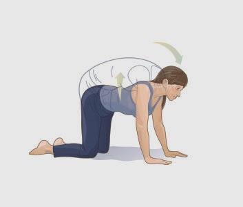 Stretching cviky: Mačací chrbátik