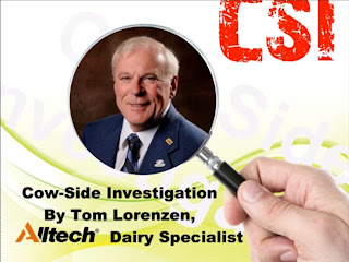 Cow-Side Investigation with Tom Lorenzen