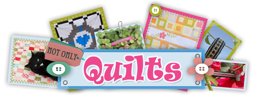 Not Only Quilts