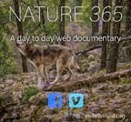 Nature365
