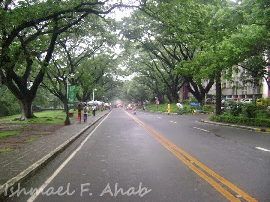 Academic Oval of UP Diliman