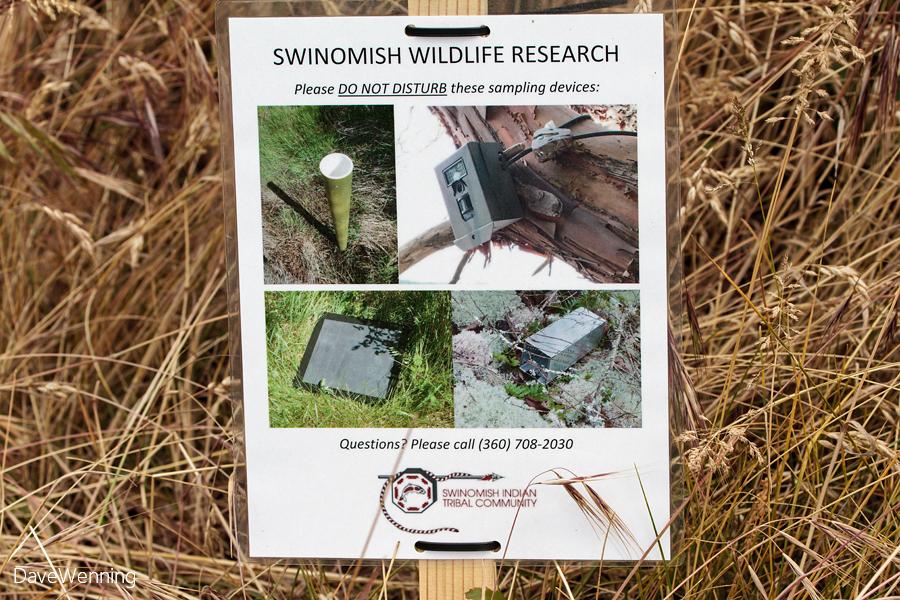 Kukutali Wildlife Research