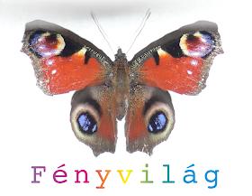 Fenyvilag.blogspot