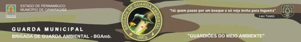Brigada de Guarda Ambiental