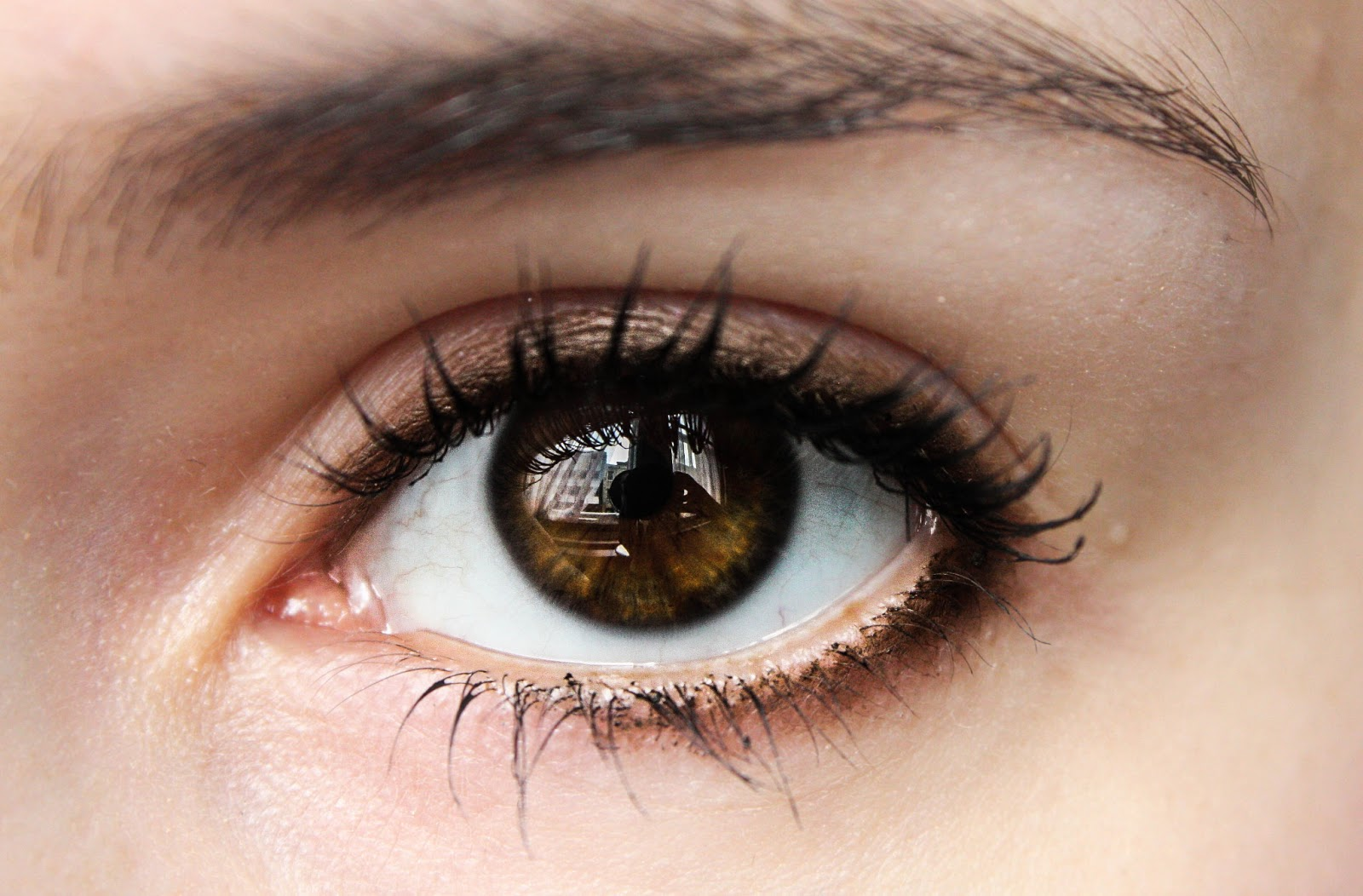 Milk Chocolate Brown Eyes Overall It S Rather Amazing