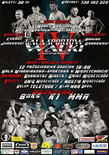 walki zawodowe, kickboxing, muay thai, mma, boks, K-1