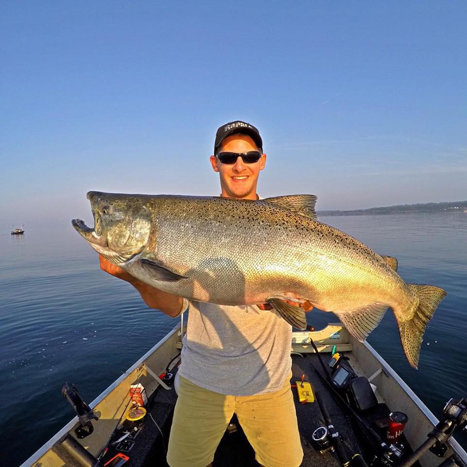 Lake Ontario Chinook Salmon