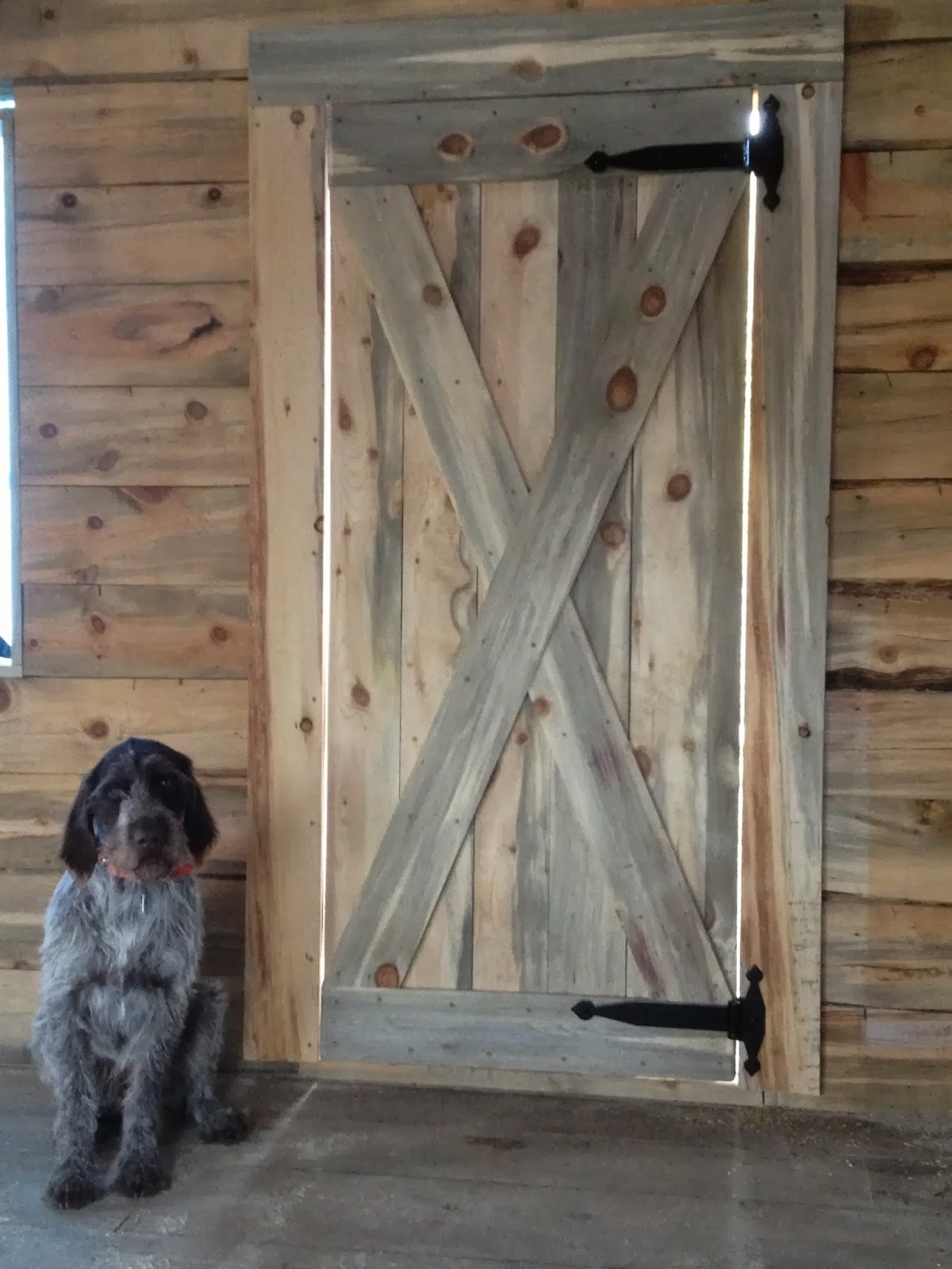 Door #2 Doc can hardly contain his excitement. & Rustic Cabin Door #2 | Szabou0027s Colorado Cabin