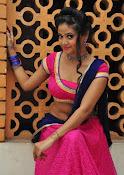 Shreya Vyas photos at Bengal Tiger audio-thumbnail-10