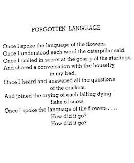 silverstein adult poem shel