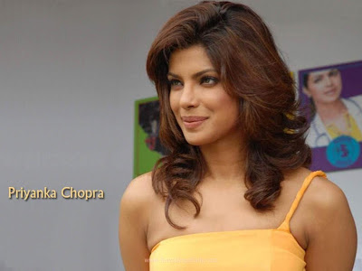 Priyanka Chopra and Shahrukh Khan Don 2 Movie Wallpaper