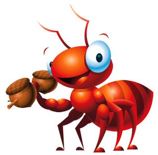 hormigas fotos: