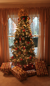 Day 120 - December 23, 2011