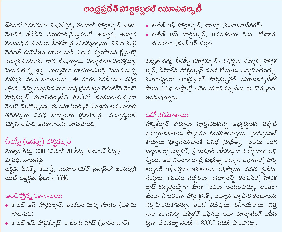 Help on essay writing day in telugu