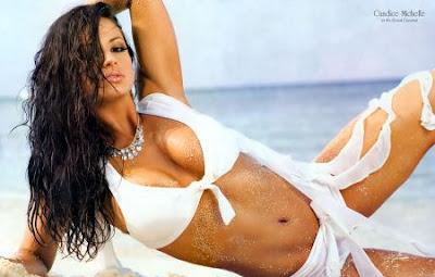 Candice Michelle - 2006-2007