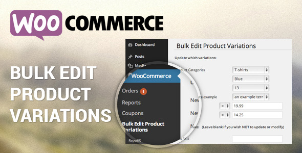 A WooCommerce feature you'd love to use for your e-store
