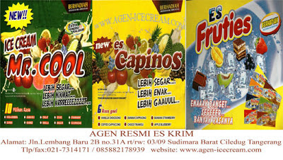 paket usaha agen ice cream, mr.cool,fruties,capinos