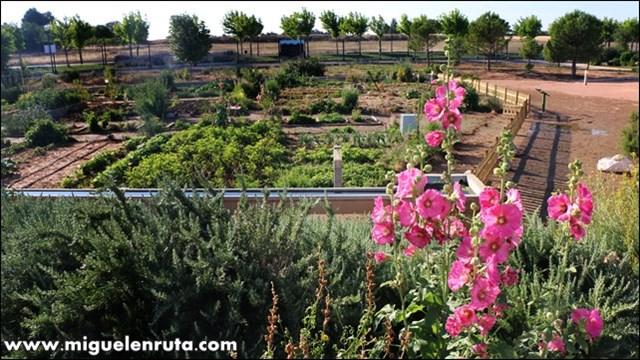 Turismo en albacete con v ctor g mez machbel en ruta for Jardin botanico castilla la mancha