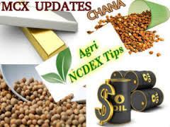 MCX NCDEX Tips