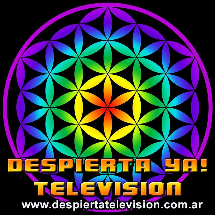DESPIERTA YA! TELEVISION