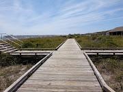 4/14 Myrtle Beach State Park Ocean Beach