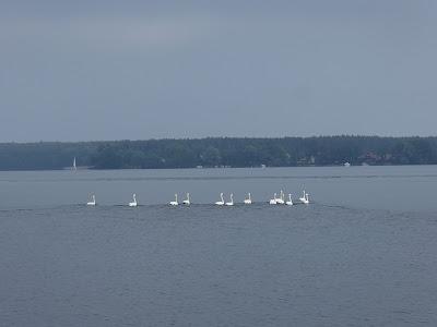 Mazury, żeglowanie, żeglarstwo, jacht, Stare Sady, Ryn, zamek w Rynie, młyn ryński