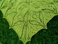 Pickled Cucumber Shawl