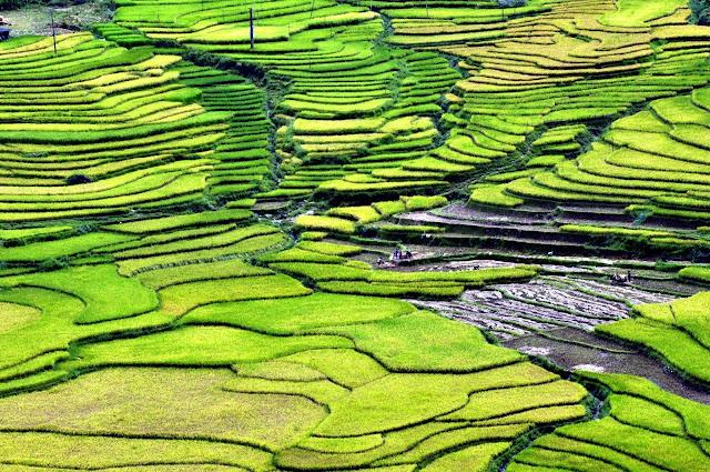 VIETNAM: Cosas que hacer en Sapa