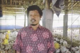 Bapak Paruh baya Mendapatkan 60 Juta/Bulan Dari Beternak Ayam Potong
