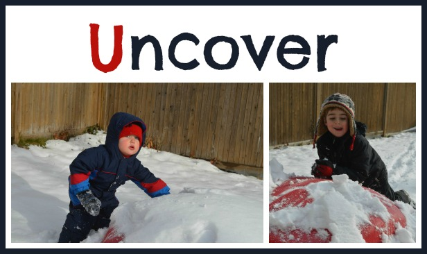 Uncover objects in the snow