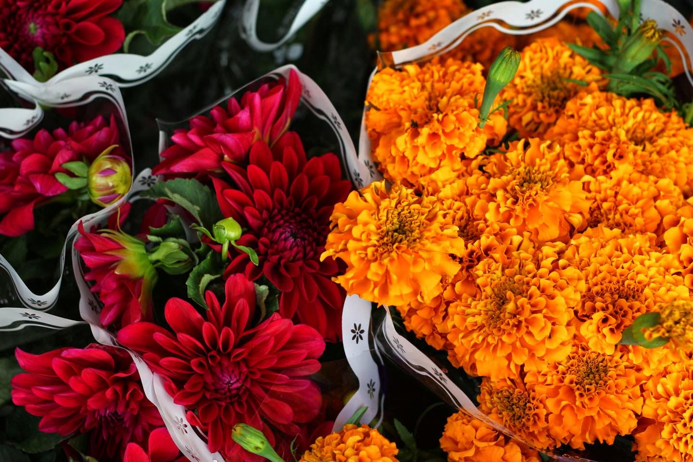 66 Square Feet Plus Fresh cut flowers