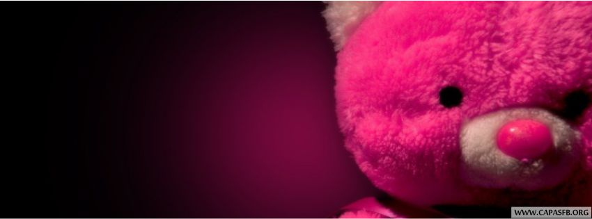 Capas para facebook Ursos de Pelucia #1