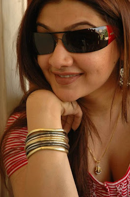Aarti Agarwal Hottest Wallpapers 2012