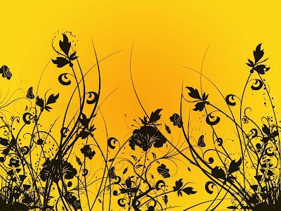 black cat yellow design