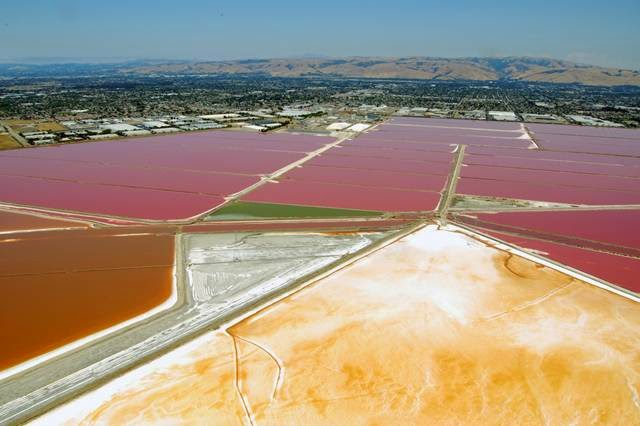 Salt ponds of San Francisco