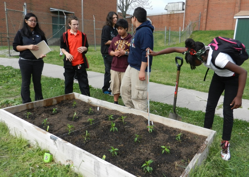 They Will Share The Results With Us And Other High Schoolu0027s Science Classes.  Funding From An Enrichment Grant And Plant Donations From Home Depot To Mr.  ...
