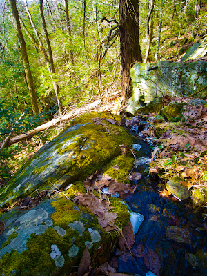 Tiny Falls on The Pomperaug Trail, Oxford Ct