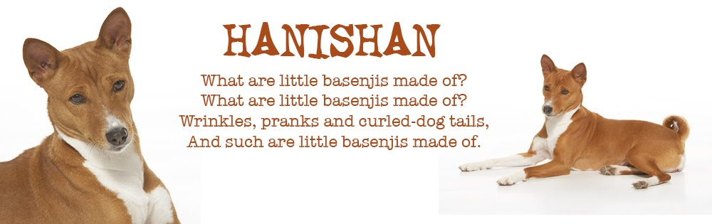 Hanishan Basenjit