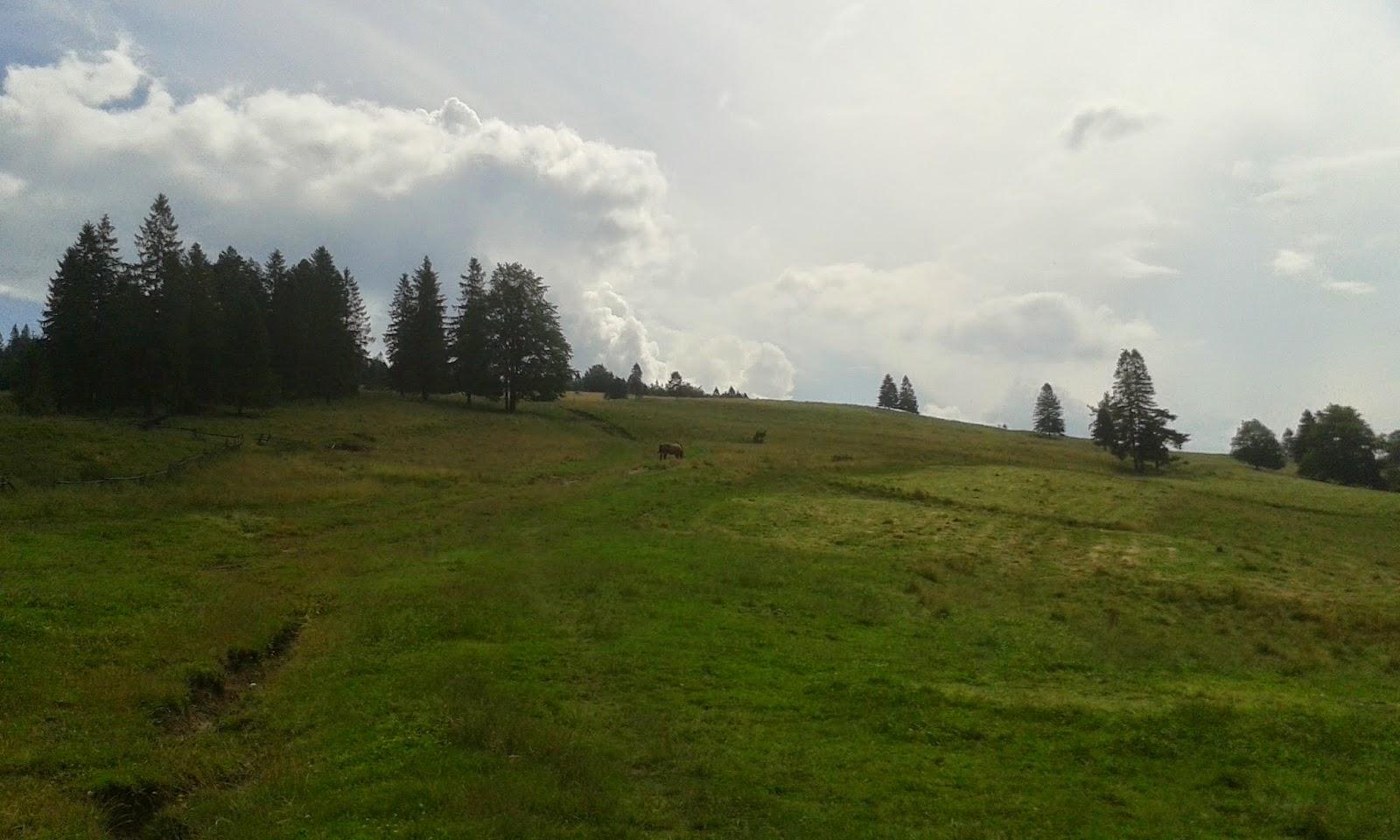 Do przełęczy Rozdzela