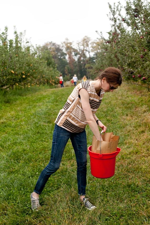 apple picking in new jersey