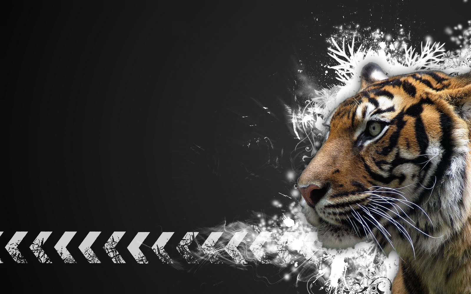 http://3.bp.blogspot.com/-rk7vDk1Xosw/TqEVfBNkS0I/AAAAAAAABaM/nPR13HI7dq4/s1600/tiger_wallpapers_hd_Tiger_Vector_Widescreen_HD_Wallpaper.jpg