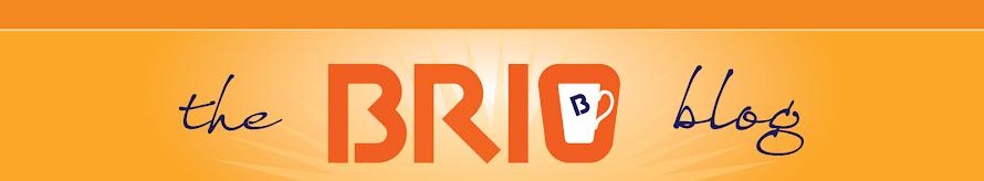 The Brio Blog
