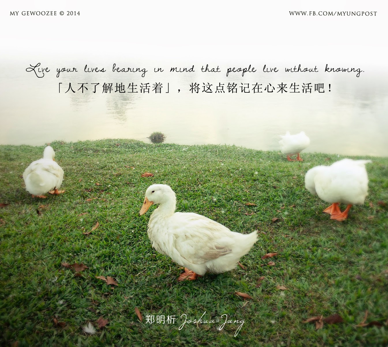 郑明析,摄理,月明洞,生活,不了解,Joshua Jung, Providence, WMD, Live, without knowing