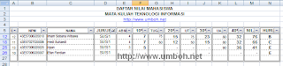 Hasil Filter Database Excel