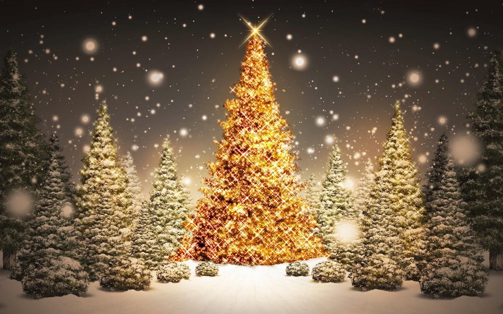 Ahora s significado del rbol de navidad - Arbol tipico de navidad ...