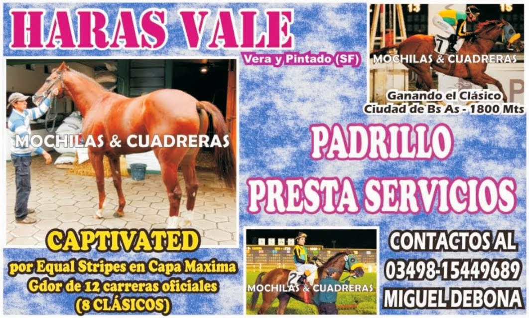 HARAS VALE - PADRILLO